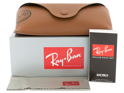 Occhiali da sole Ray-Ban Justin RB4165 - 865/T5 POL  - Preview pack (illustration photo)