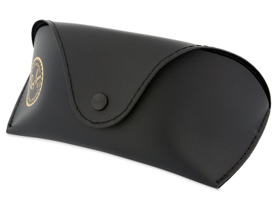 Occhiali da sole Ray-Ban RB2027 - W1847  - Original leather case (illustration photo)